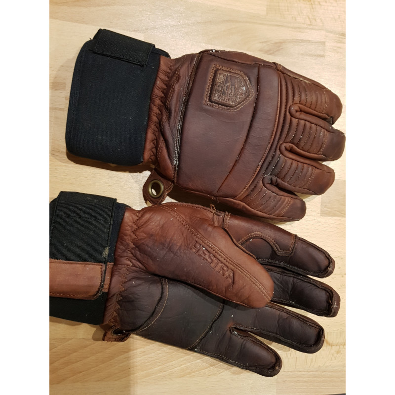 Image 1 from Pieter of Hestra - Leather Fall Line 5 Finger - Gloves