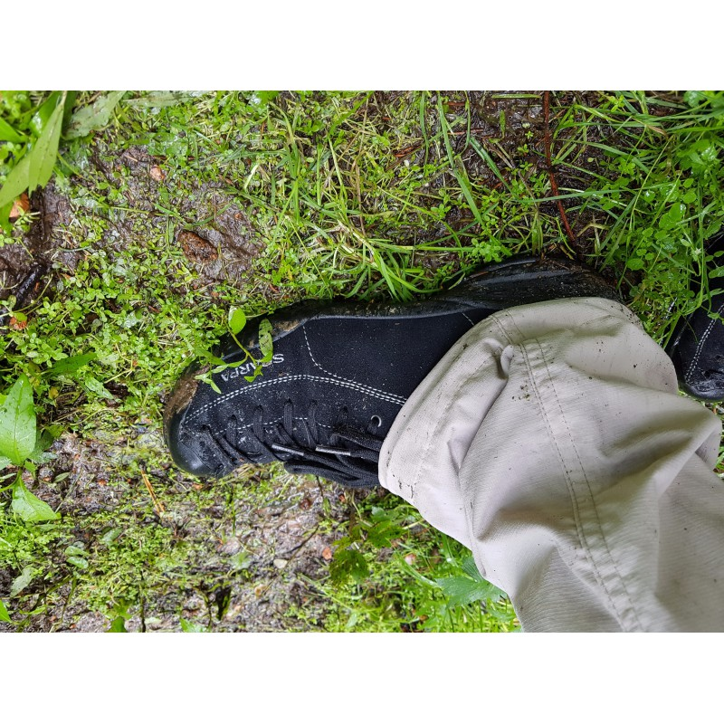 Image 1 from Timo of Scarpa - Mojito - Hiking shoes