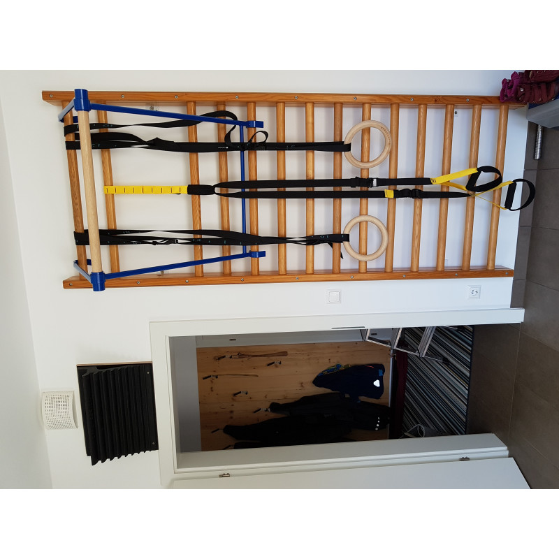 Image 1 from Katharina of Surfaces for Climbing - Progression - Training board